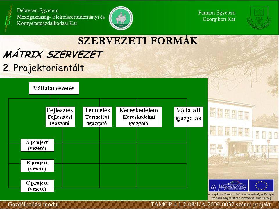 SZERVEZETI FORMÁK MÁTRIX SZERVEZET 2. Projektorientált