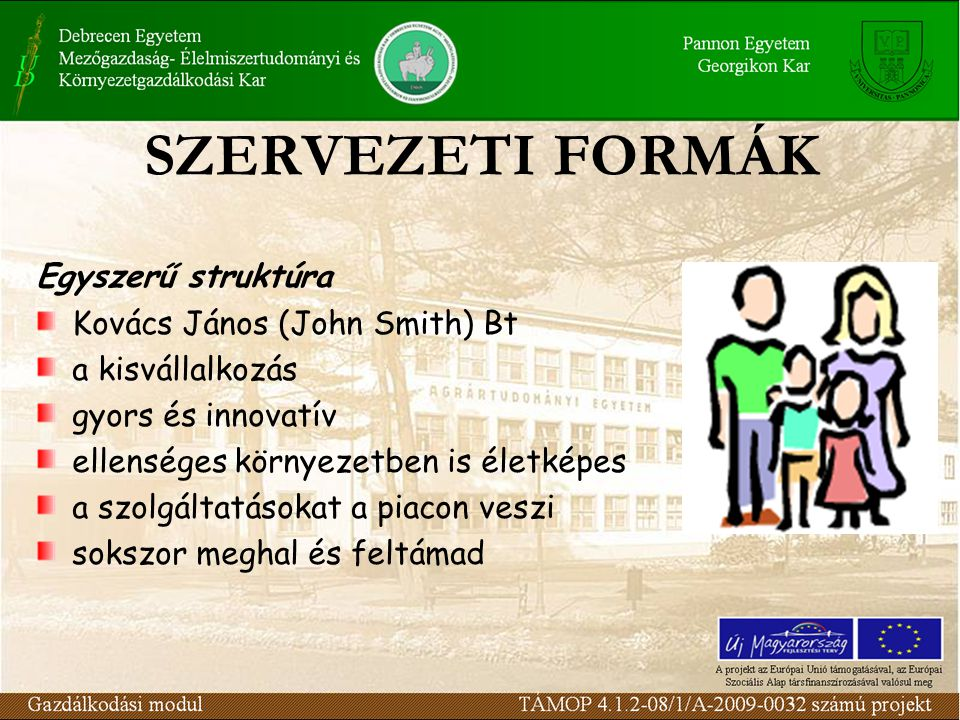 SZERVEZETI FORMÁK Egyszerű struktúra Kovács János (John Smith) Bt