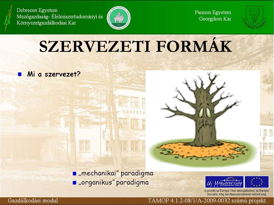 """SZERVEZETI FORMÁK Mi a szervezet """"mechanikai paradigma"""