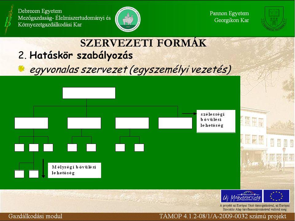 SZERVEZETI FORMÁK 2. Hatáskör szabályozás