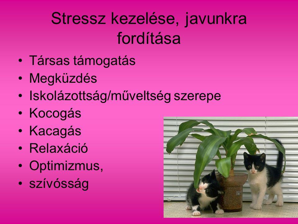 Stressz kezelése, javunkra fordítása