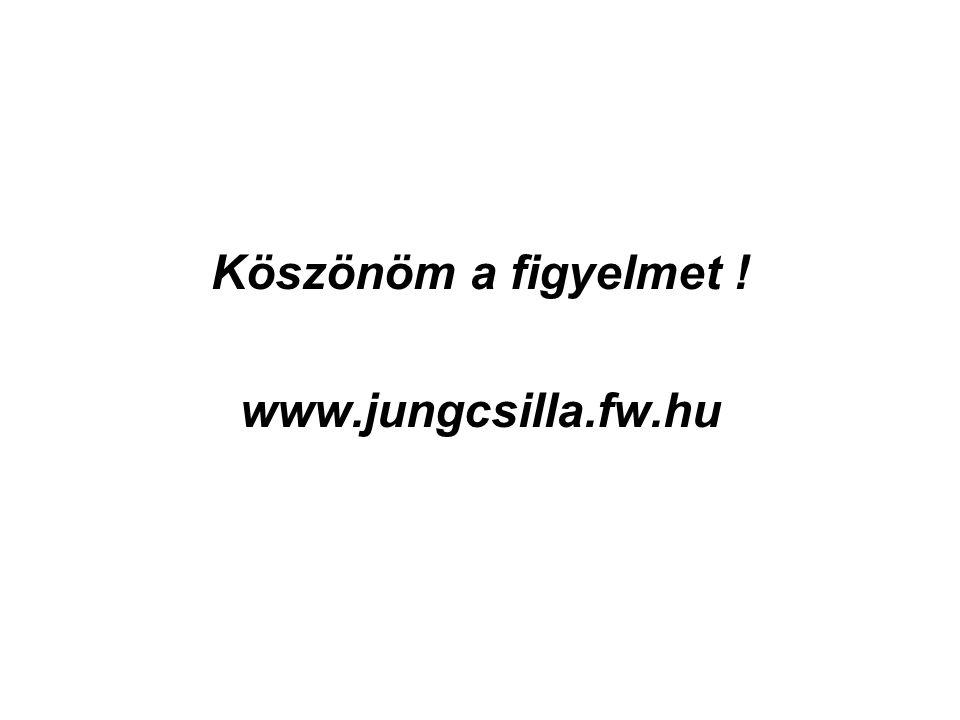 Köszönöm a figyelmet ! www.jungcsilla.fw.hu