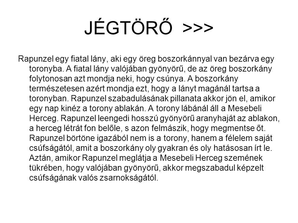 JÉGTÖRŐ >>>