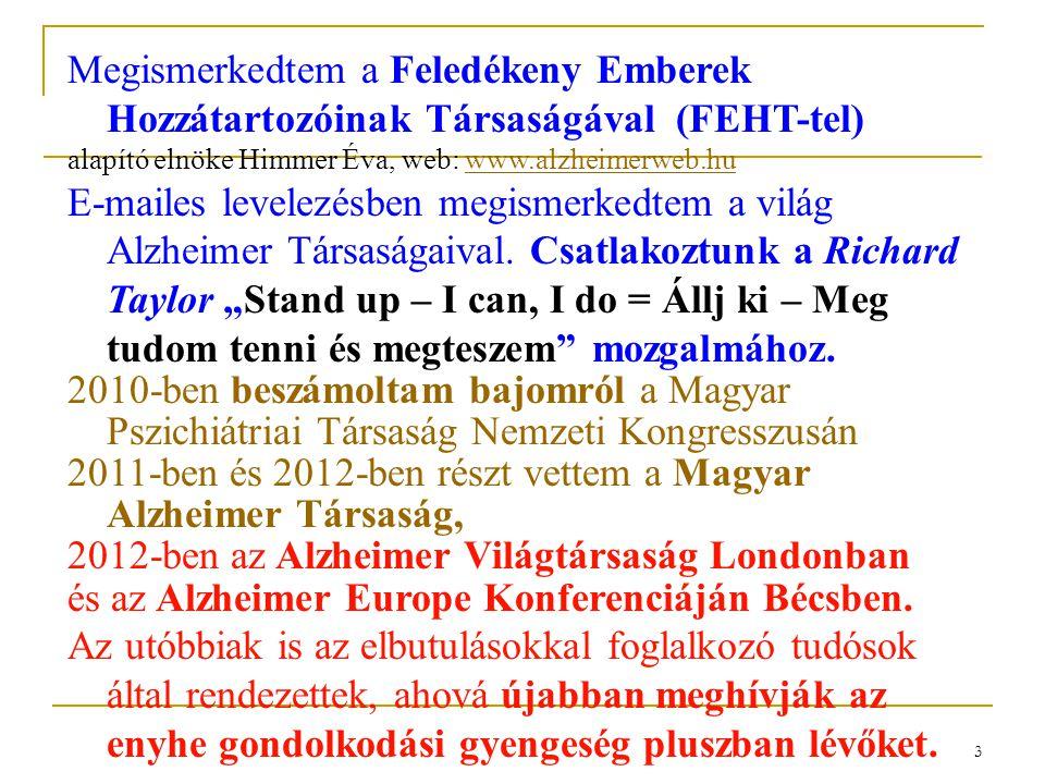 FELEDÉKENY EMBEREK HOZZÁTARTOZÓINAK TÁRSASÁGA 1999-2009