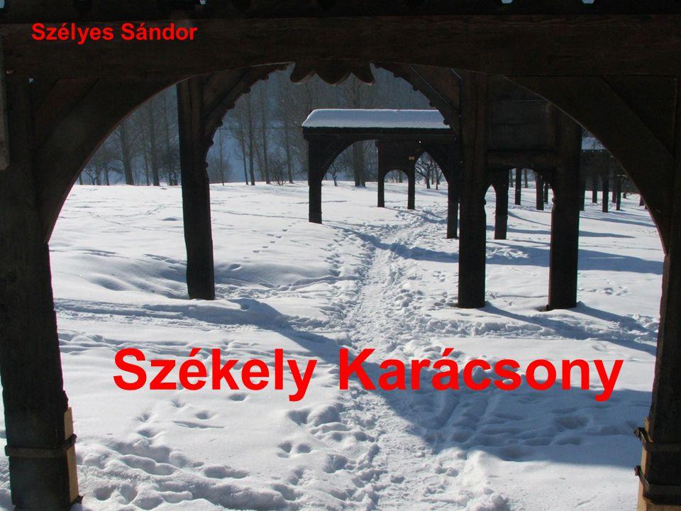 Szélyes Sándor Székely Karácsony