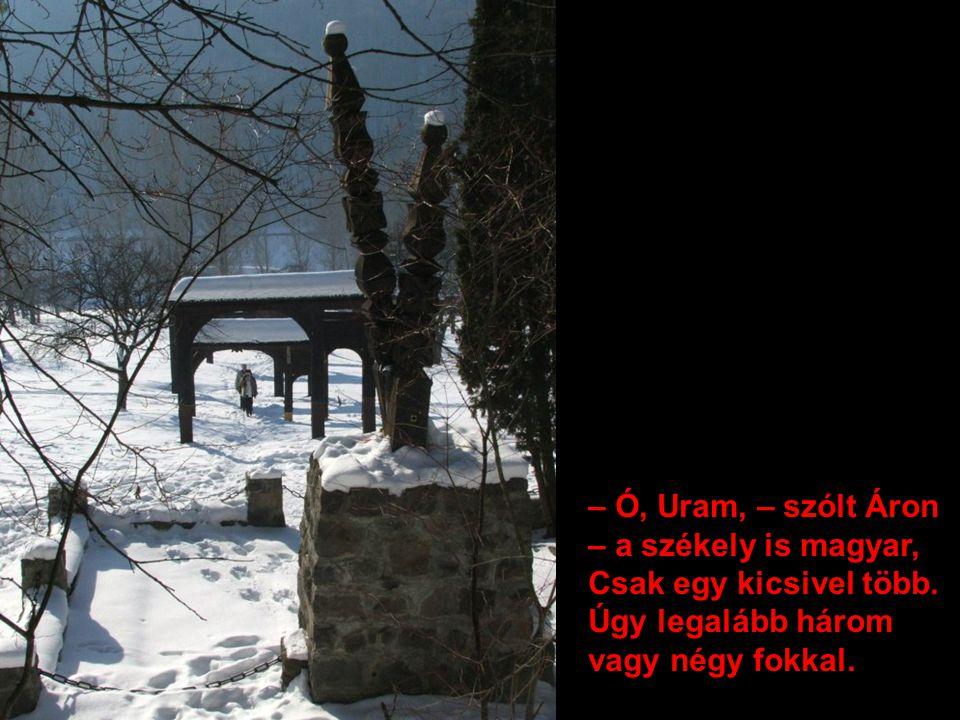 – Ó, Uram, – szólt Áron – a székely is magyar,