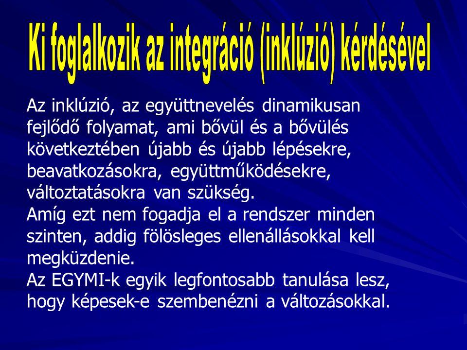 Ki foglalkozik az integráció (inklúzió) kérdésével