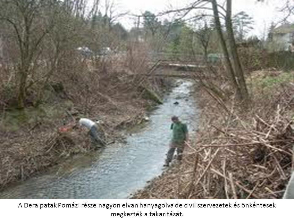 A Dera patak Pomázi része nagyon elvan hanyagolva de civil szervezetek és önkéntesek megkezték a takaritását.