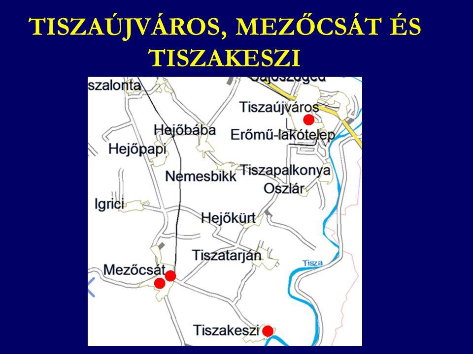 TISZAÚJVÁROS, MEZŐCSÁT ÉS TISZAKESZI