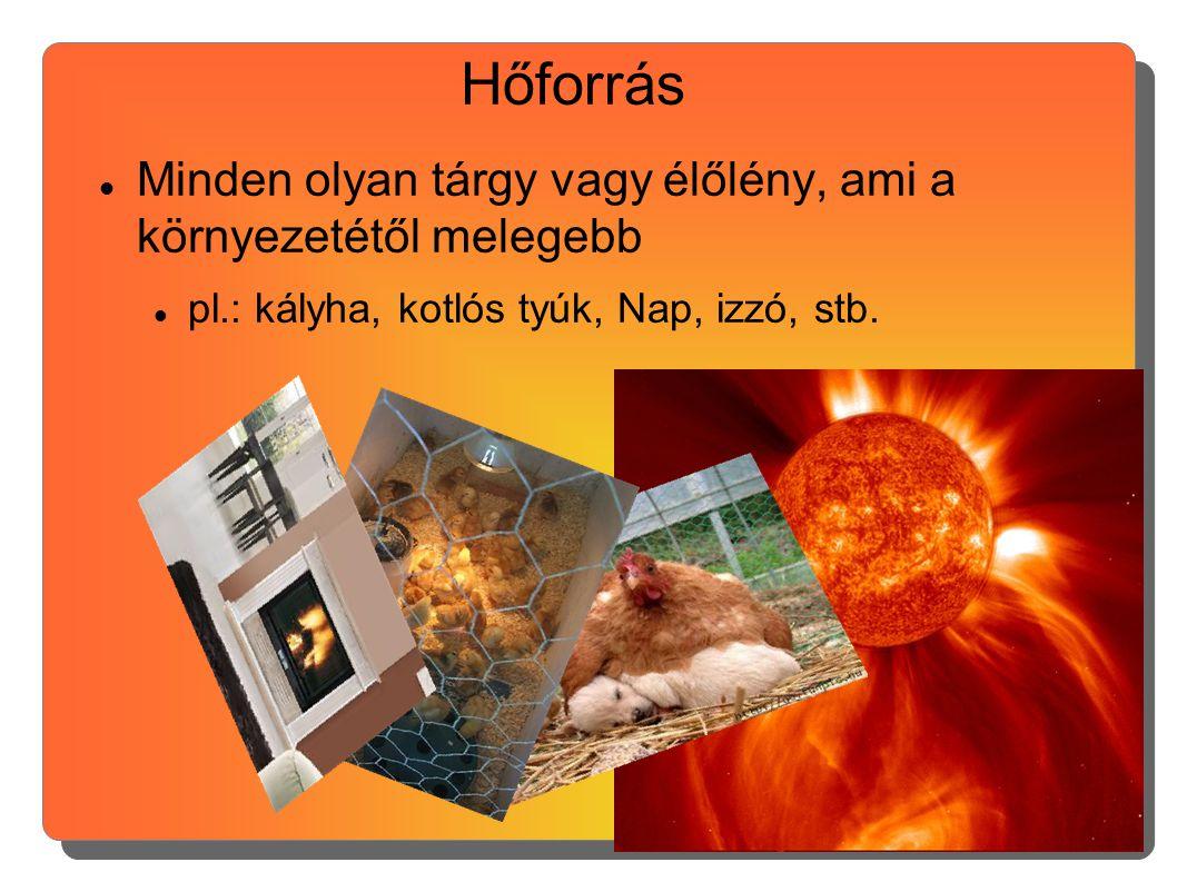 Hőforrás Minden olyan tárgy vagy élőlény, ami a környezetétől melegebb
