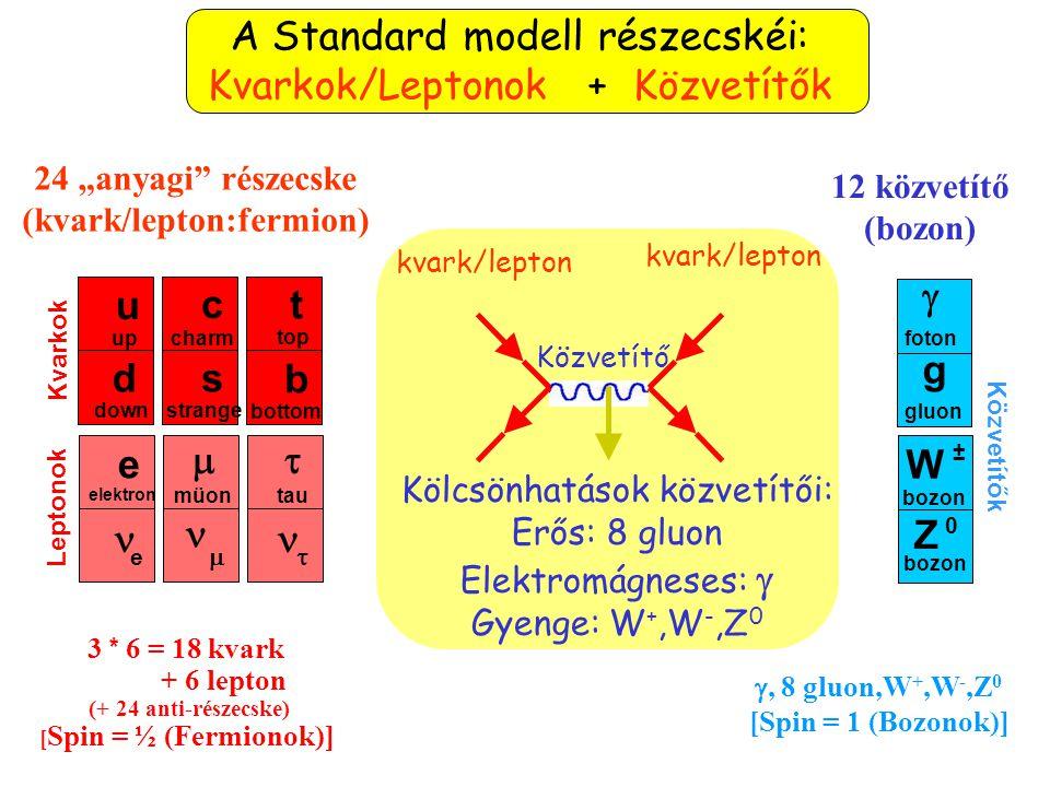 (kvark/lepton:fermion)