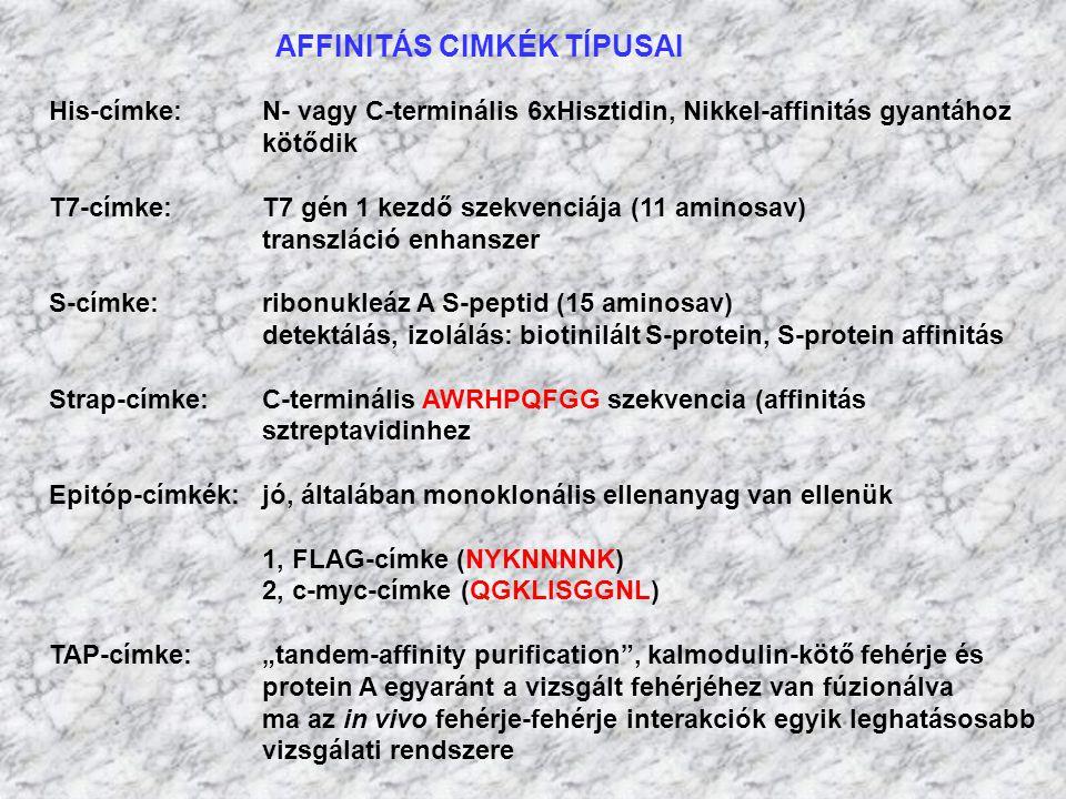 AFFINITÁS CIMKÉK TÍPUSAI