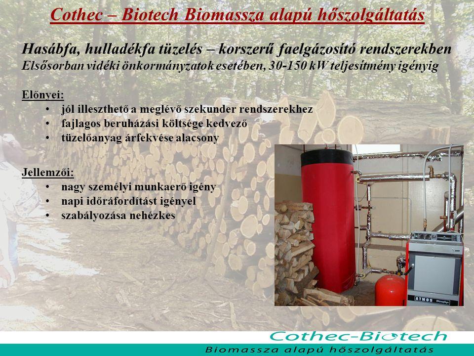 Cothec – Biotech Biomassza alapú hőszolgáltatás