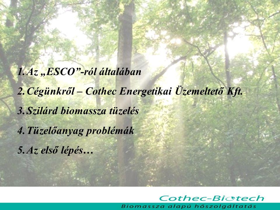 """Az """"ESCO -ról általában"""