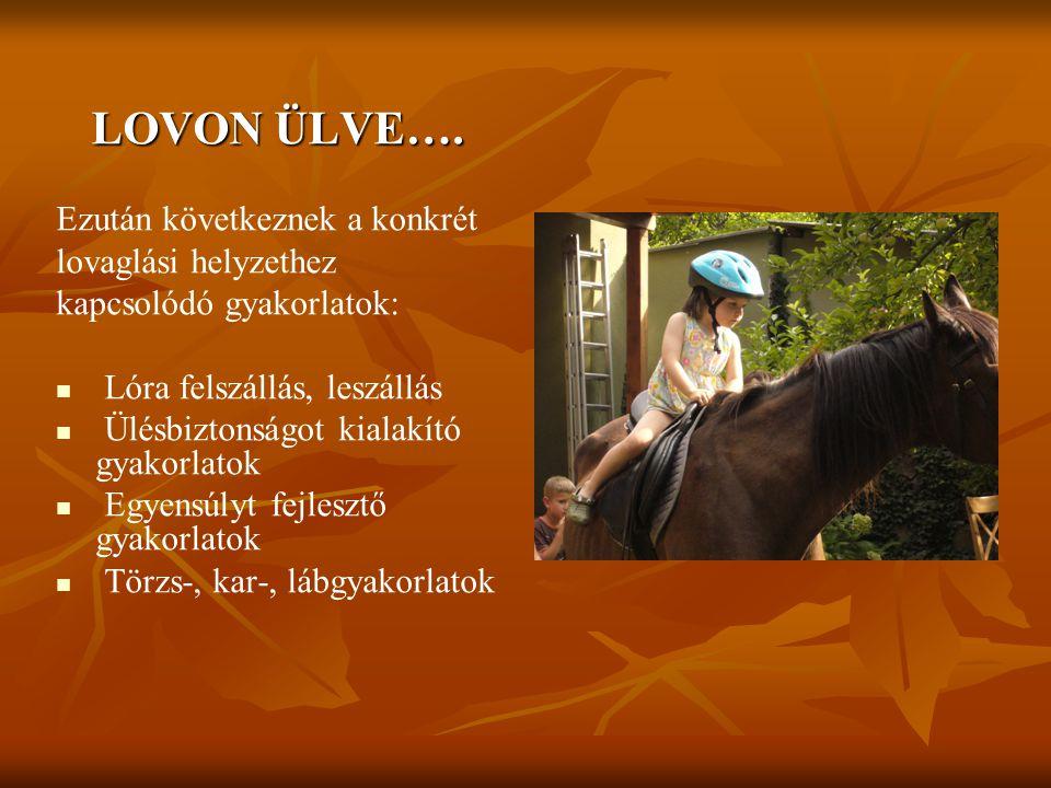 LOVON ÜLVE…. Ezután következnek a konkrét lovaglási helyzethez