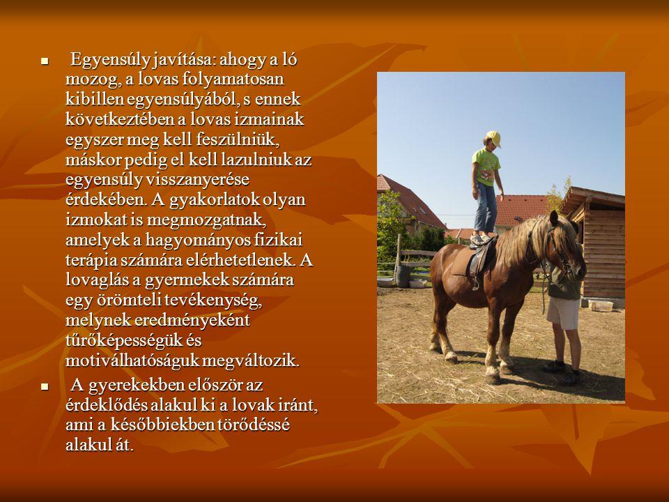 Egyensúly javítása: ahogy a ló mozog, a lovas folyamatosan kibillen egyensúlyából, s ennek következtében a lovas izmainak egyszer meg kell feszülniük, máskor pedig el kell lazulniuk az egyensúly visszanyerése érdekében. A gyakorlatok olyan izmokat is megmozgatnak, amelyek a hagyományos fizikai terápia számára elérhetetlenek. A lovaglás a gyermekek számára egy örömteli tevékenység, melynek eredményeként tűrőképességük és motiválhatóságuk megváltozik.