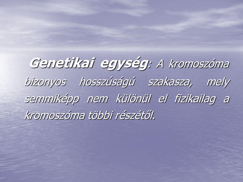 Genetikai egység: A kromoszóma bizonyos hosszúságú szakasza, mely semmiképp nem különül el fizikailag a kromoszóma többi részétől.