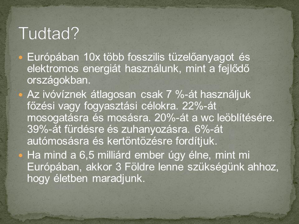 Tudtad Európában 10x több fosszilis tüzelőanyagot és elektromos energiát használunk, mint a fejlődő országokban.