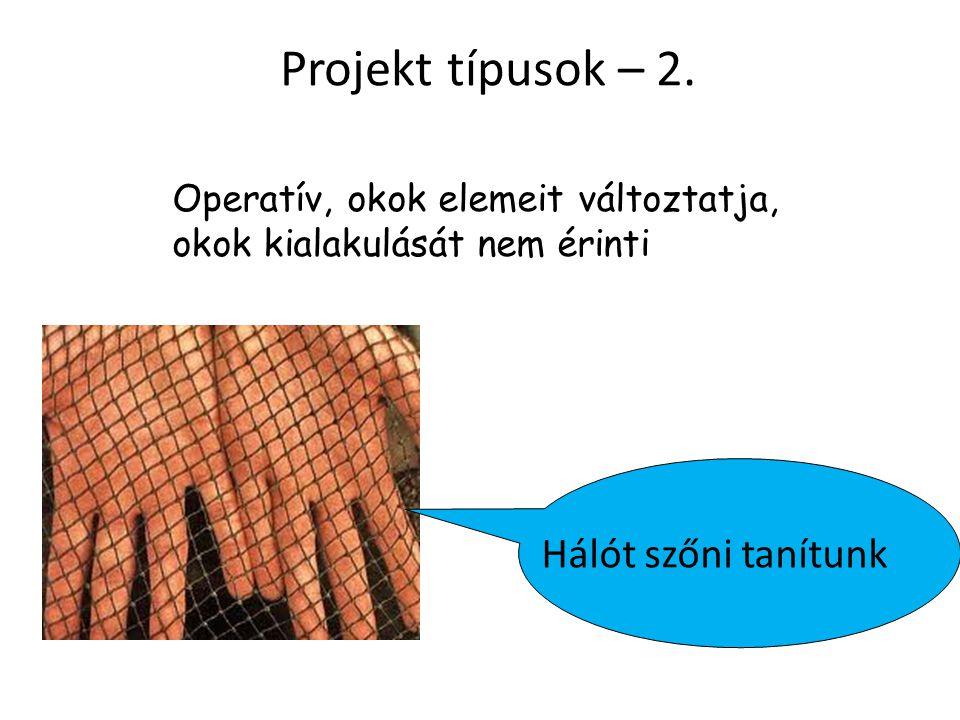 Projekt típusok – 2. Hálót szőni tanítunk