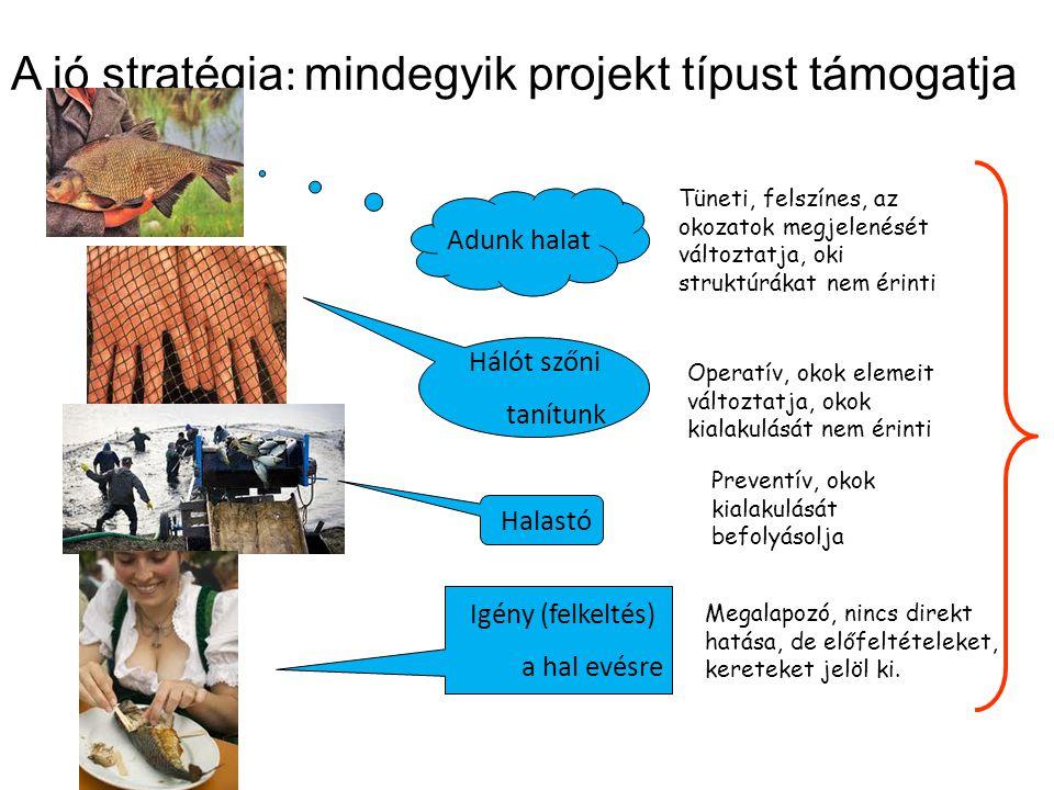 A jó stratégia: mindegyik projekt típust támogatja