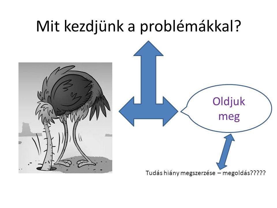 Mit kezdjünk a problémákkal