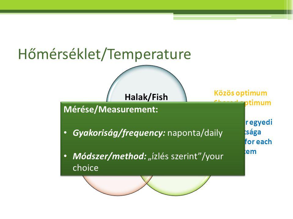 Hőmérséklet/Temperature