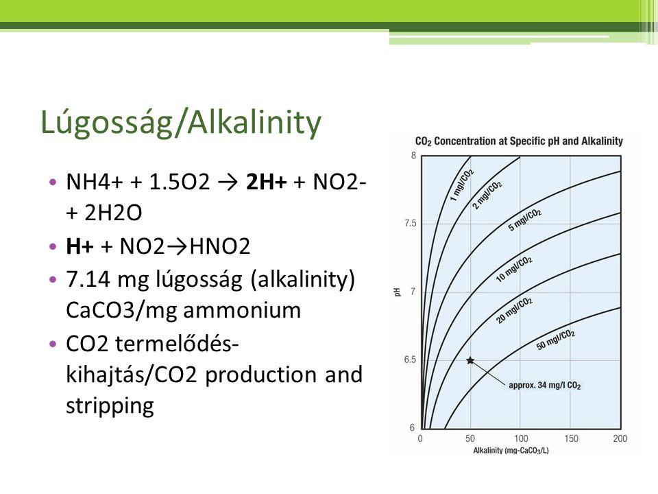 Lúgosság/Alkalinity NH4+ + 1.5O2 → 2H+ + NO2- + 2H2O H+ + NO2→HNO2