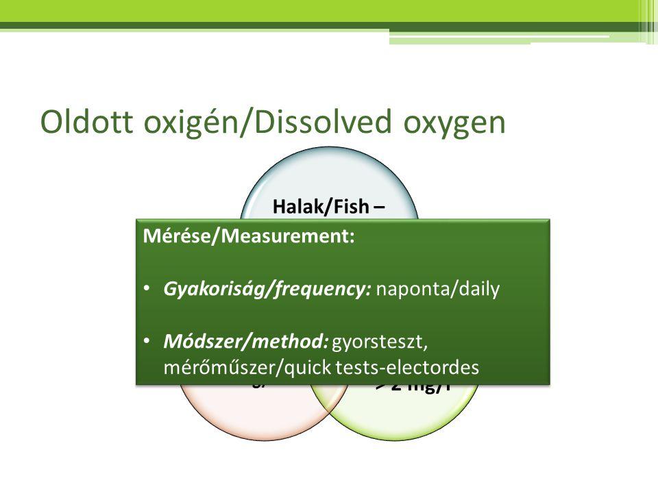 Oldott oxigén/Dissolved oxygen