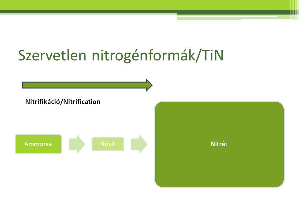 Szervetlen nitrogénformák/TiN