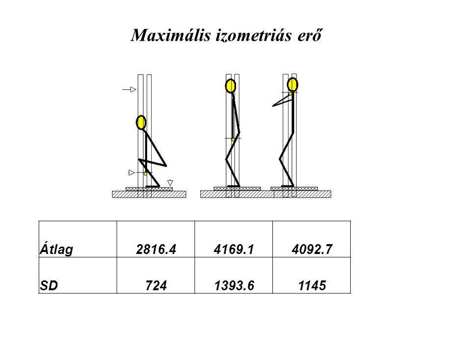 Maximális izometriás erő