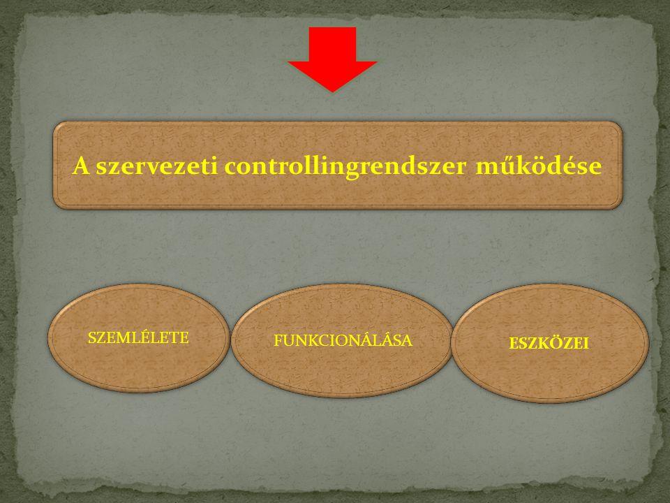 A szervezeti controllingrendszer működése