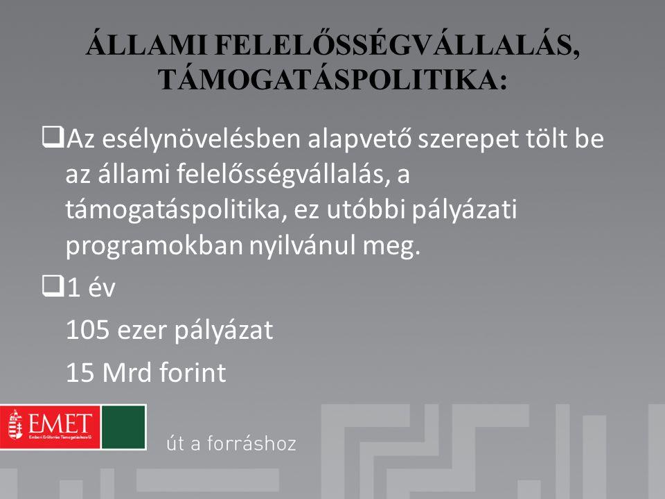 ÁLLAMI FELELŐSSÉGVÁLLALÁS, TÁMOGATÁSPOLITIKA: