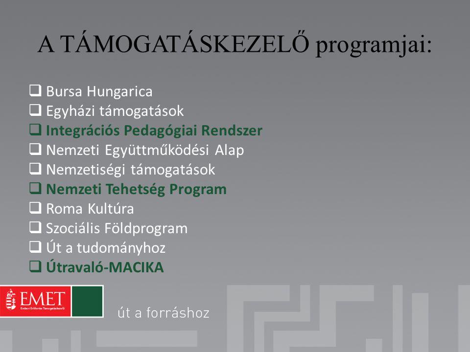 A TÁMOGATÁSKEZELŐ programjai: