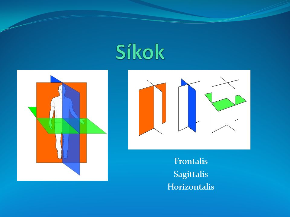 Síkok Frontalis Sagittalis Horizontalis