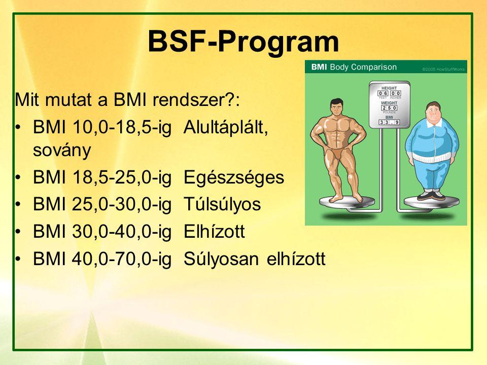 BSF-Program Mit mutat a BMI rendszer :