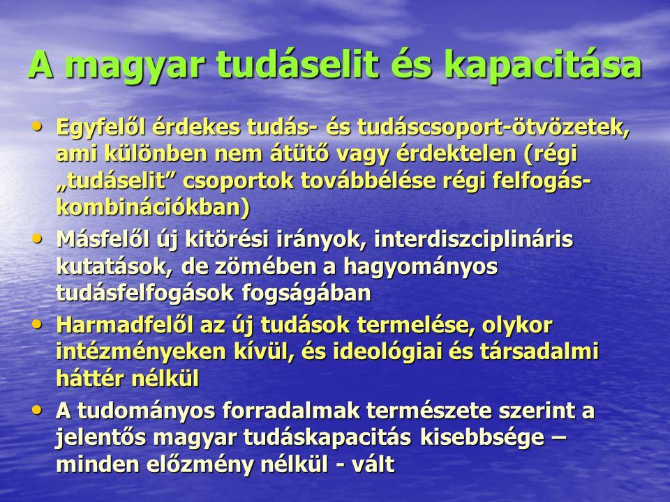A magyar tudáselit és kapacitása
