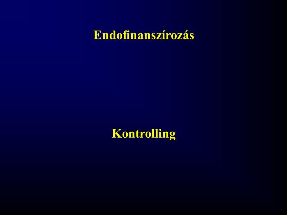 Endofinanszírozás Kontrolling