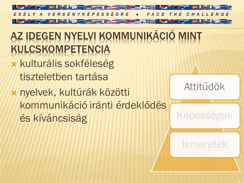 Az idegen nyelvi kommunikáció mint kulcskompetencia