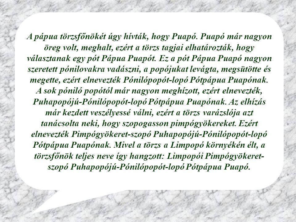 A pápua törzsfőnökét úgy hívták, hogy Puapó