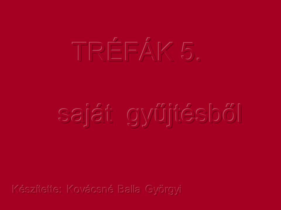 TRÉFÁK 5. saját gyűjtésből Készítette: Kovácsné Balla Györgyi