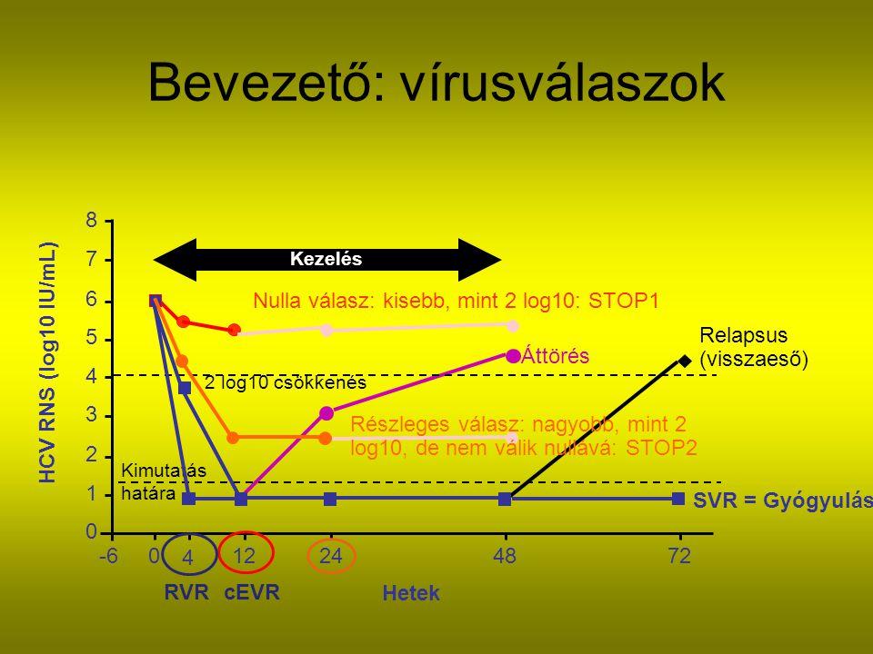 Bevezető: vírusválaszok
