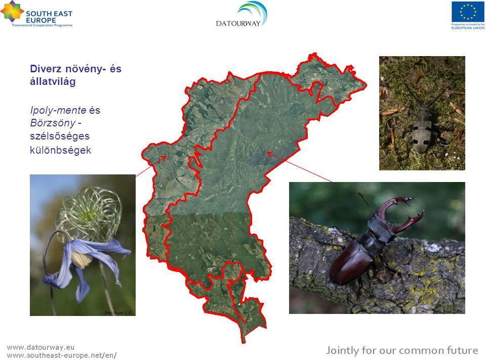 Diverz növény- és állatvilág