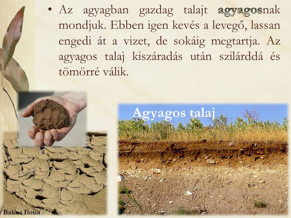 Az agyagban gazdag talajt agyagosnak mondjuk