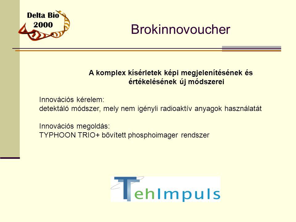 Brokinnovoucher A komplex kísérletek képi megjelenítésének és értékelésének új módszerei. Innovációs kérelem: