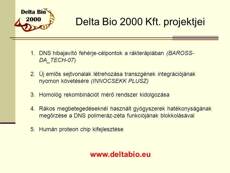 Delta Bio 2000 Kft. projektjei