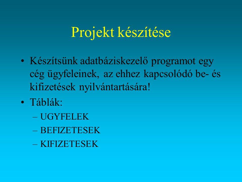 Projekt készítése Készítsünk adatbáziskezelő programot egy cég ügyfeleinek, az ehhez kapcsolódó be- és kifizetések nyilvántartására!