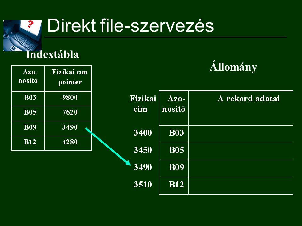 Direkt file-szervezés