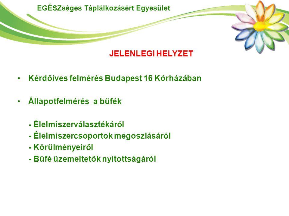 Kérdőíves felmérés Budapest 16 Kórházában Állapotfelmérés a büfék