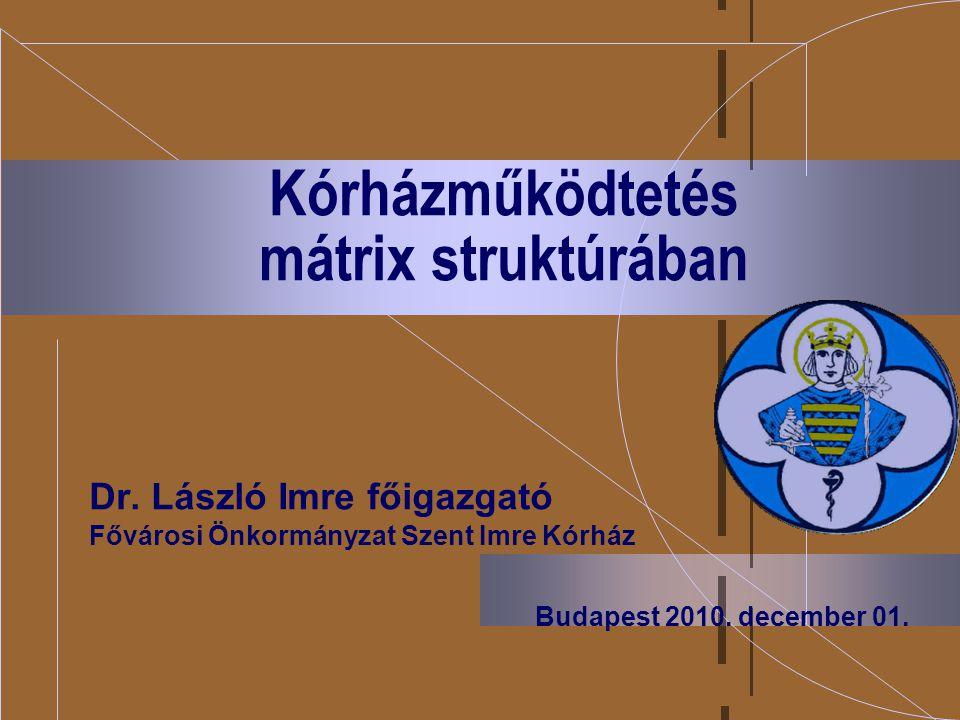 Kórházműködtetés mátrix struktúrában