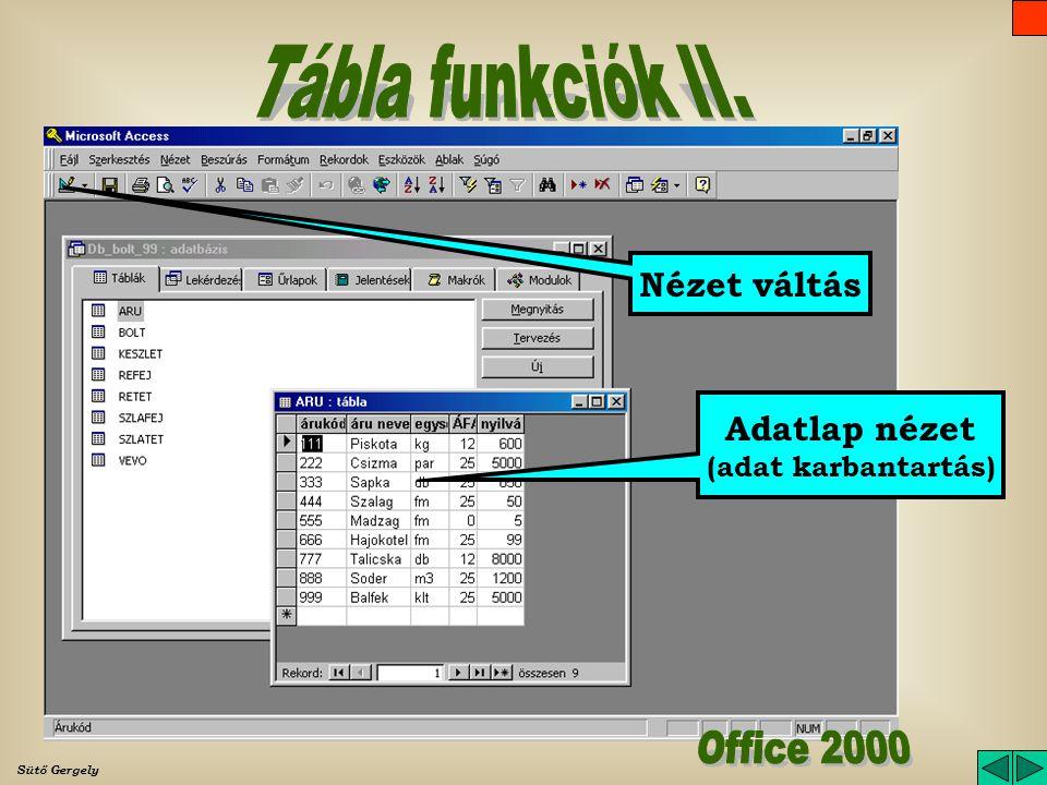 Tábla funkciók II. Office 2000 Nézet váltás Adatlap nézet